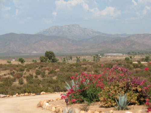 Guadelupe Valley, Baja California